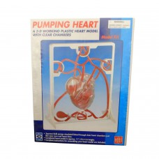 Puming Heart Model